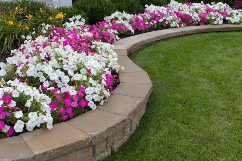 lawn with flowers shutterstock_150373661 copy
