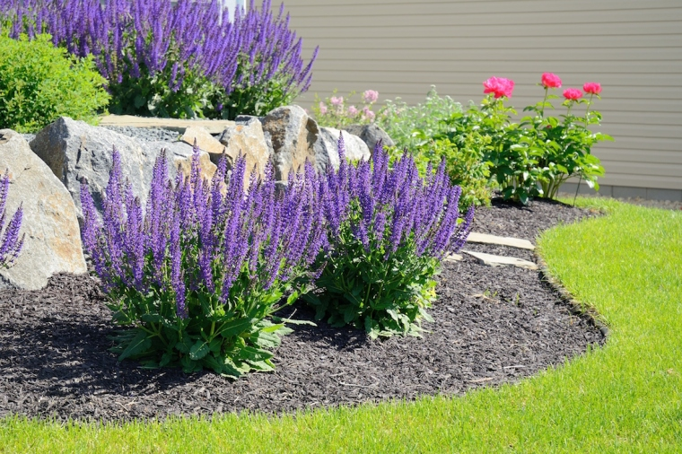 mulch shutterstock_429831499 copy
