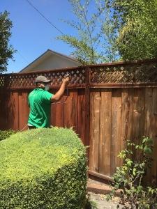 fence IMG_0256 blog